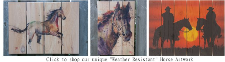 Outdoor Horse Artwork