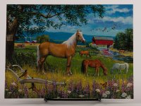 Horses grazing on the farm - Friendship Card