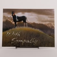 Sympathy Card - Horses waiting in the mountains