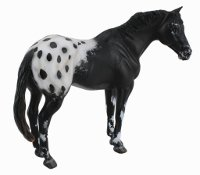 Appaloosa Stallion Black Model Horse Replica