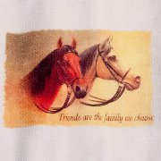 """Friends are the Family..."" Huck Towel with Alert Horses"