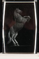 Rearing Horse lasered glass art blocks