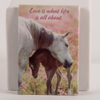 Mare and Foal Embracing - Magnet - All about love