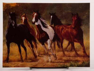 Horses Running Free Birthday Card By Chris Cummings Horse Theme Gifts When It Has To Have A On