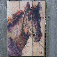 Black Stallion - Weather Resistant Signature Series - 16 x 24