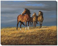 """On Alert"" Horse Portrait by Persis Clayton Weirs"